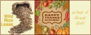 Thanksgiving-Promo-Rice-300x115